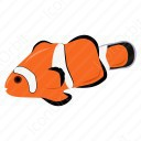 Amphiprion Percula Fish icon