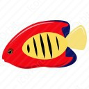 Centropyge Loricula Fish icon