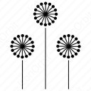 Mimosa Flower Sets icon