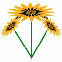 Helianthus Flower icon