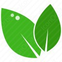 2 Leaves icon