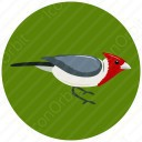 Red Bird In Circle icon