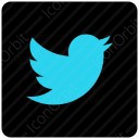 twitter sky blue icon