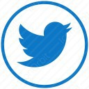 twitter sky blue circle icon