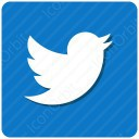twitter white and blue icon