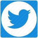 twitter white and blue circle icon
