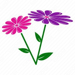 Colourful Flowers  icon