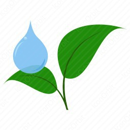 Drop with Leaves Icon