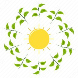 sun under leaves Icon